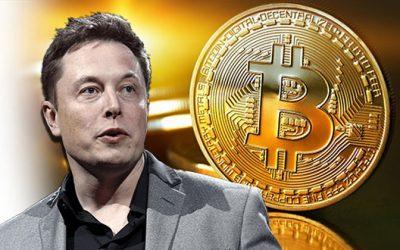 Elon Musk Sobre La Burbuja Del Bitcoin
